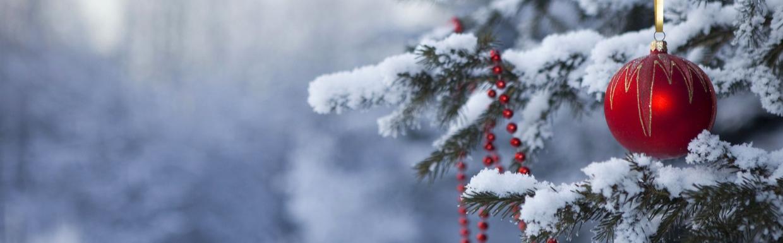 Karácsonyfa Szépségverseny